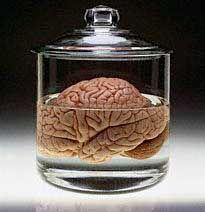 Brain-in-jar