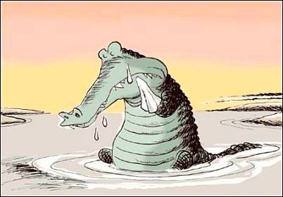 Image result for alligator tears images
