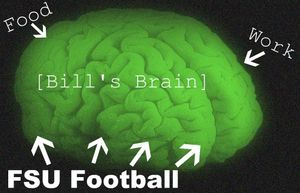 BFT brain labeled