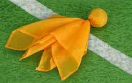 Penalty_flag_3